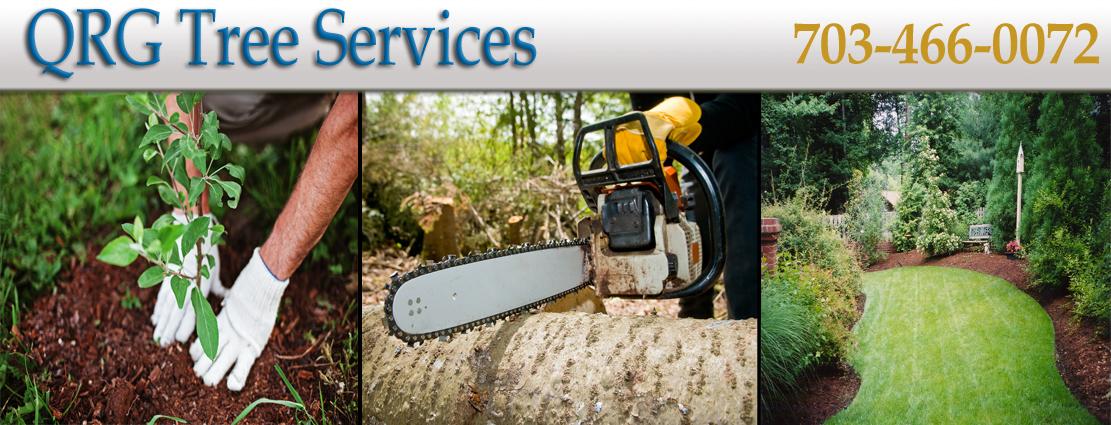 QRG_Tree_Services6.jpg