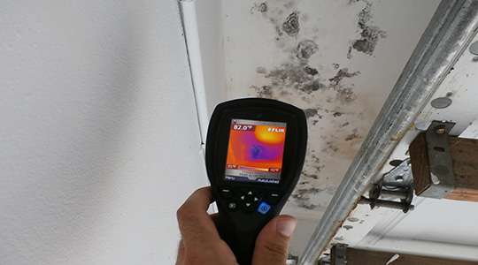 Reliable Mold Inspection Companies Bonita Springs FL