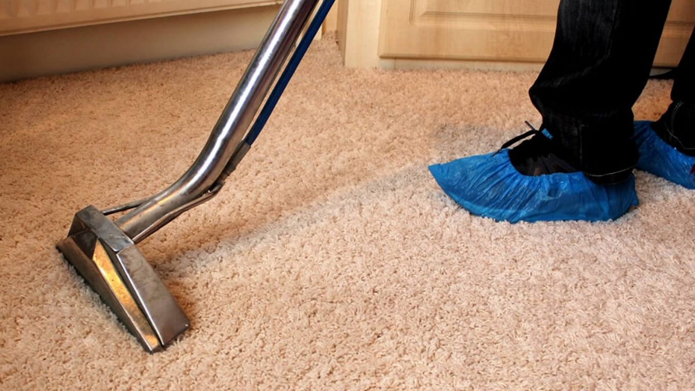 Affordable Carpet Cleaning Highlands Ranch CO